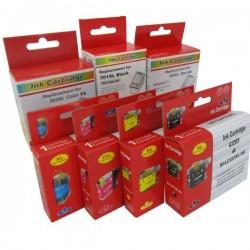 Tusz do Epson T050 T013 BLACK C13T05014010